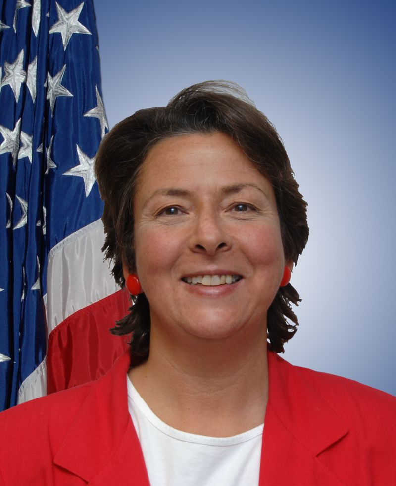 Ann Azevedo
