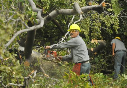 Pictures- Hurricane Irene - baltimoresun