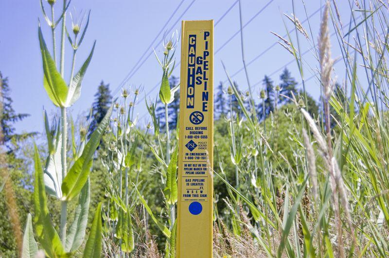 Puget Sound pipeline marker