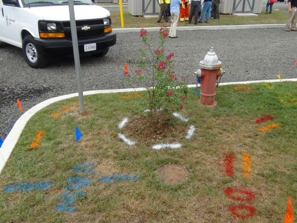 Photo of safety markings
